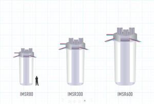 IMSR core sizes
