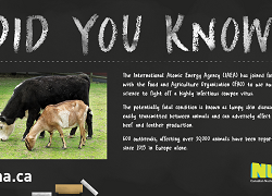 Did You Know? Cowpox