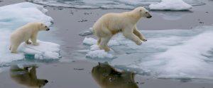 Image for Nouvelle étude : Le changement climatique est considéré comme le problème le plus grave auquel le Canada fait face actuellement – malgré des incertitudes sans précédent en matière d'économie et d'emploi dues à lapandémie