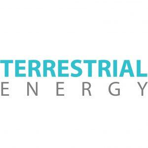 Terrestrial EnergyInc. Logo